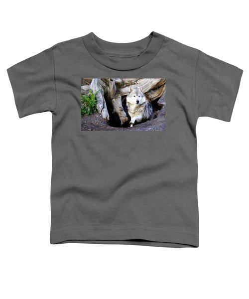 Wolf Den 1 Toddler T-Shirt