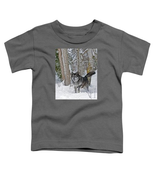 Wolf In Trees Toddler T-Shirt
