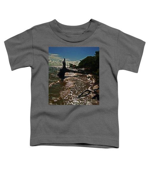 Wood Light Toddler T-Shirt