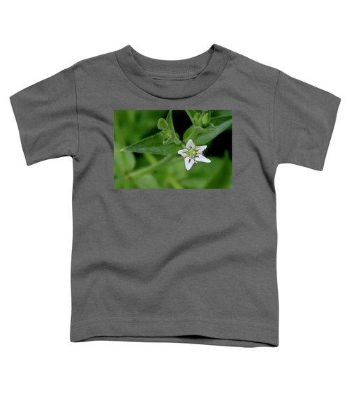 Woodland Wildflower Toddler T-Shirt