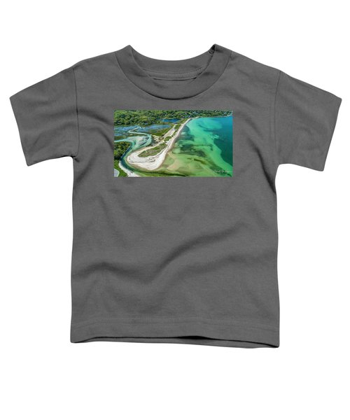 Woodneck Beach Toddler T-Shirt