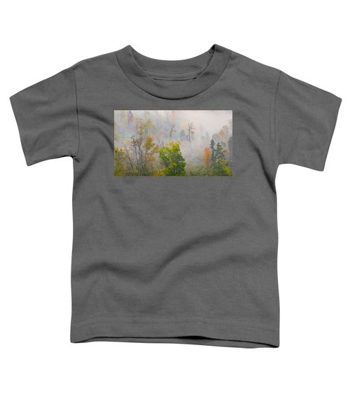Woods From Afar Toddler T-Shirt