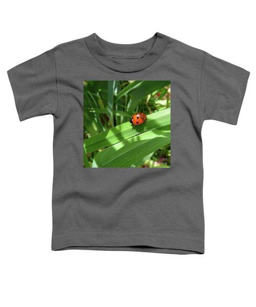 World Of Ladybug 1 Toddler T-Shirt