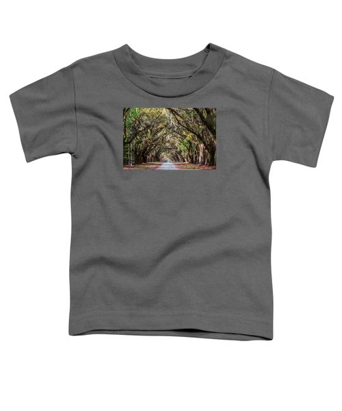 Wormsloe Plantation Oaks Toddler T-Shirt
