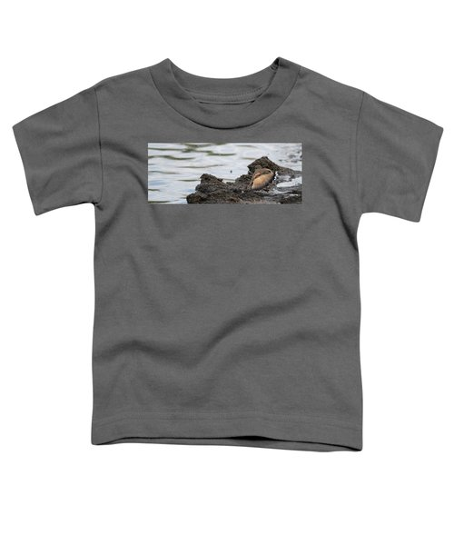 Wounded Wing Toddler T-Shirt