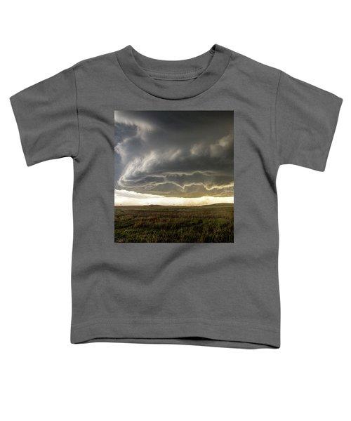 Wray Colorado Tornado 021 Toddler T-Shirt