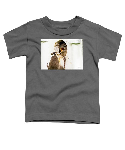 Wren Breakfast Toddler T-Shirt