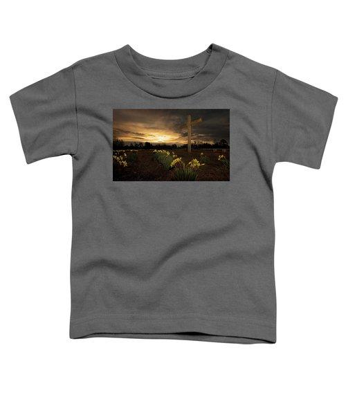 Wye Mountain Sunset Toddler T-Shirt