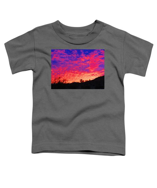 Y Cactus Sunset 1 Toddler T-Shirt