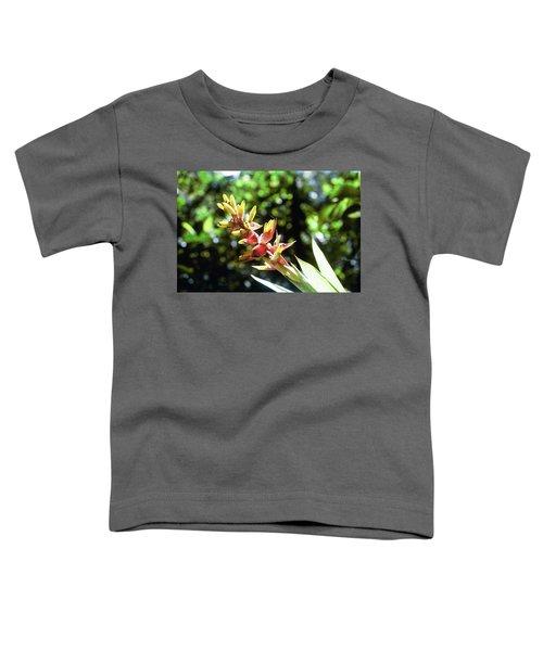 Yado Toddler T-Shirt