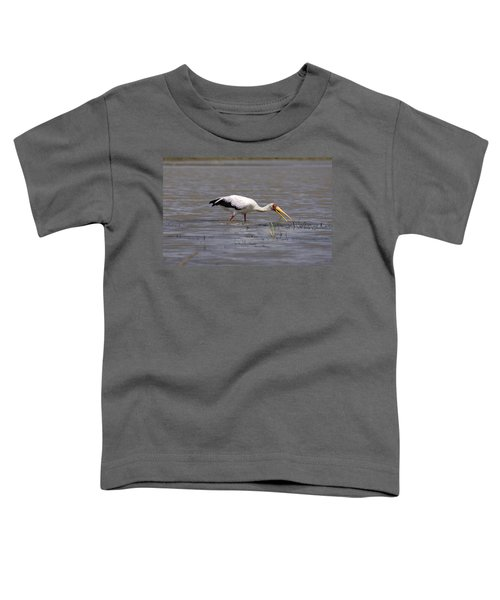 Yellow Billed Stork Wading In The Shallows Toddler T-Shirt