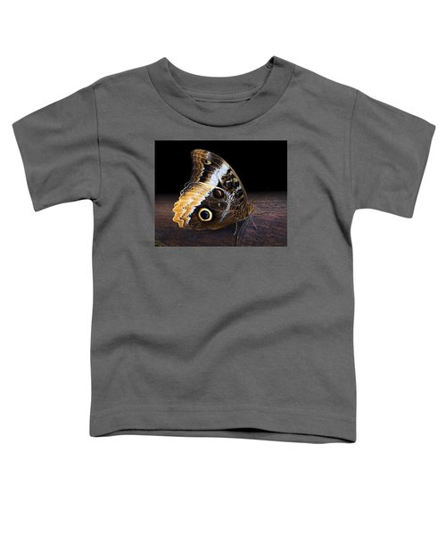 Yellow-edged Giant Owl Butterfly Toddler T-Shirt