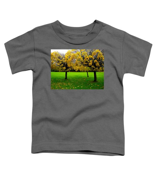 Yellow Leaves At Muckross Gardens Killarney Toddler T-Shirt