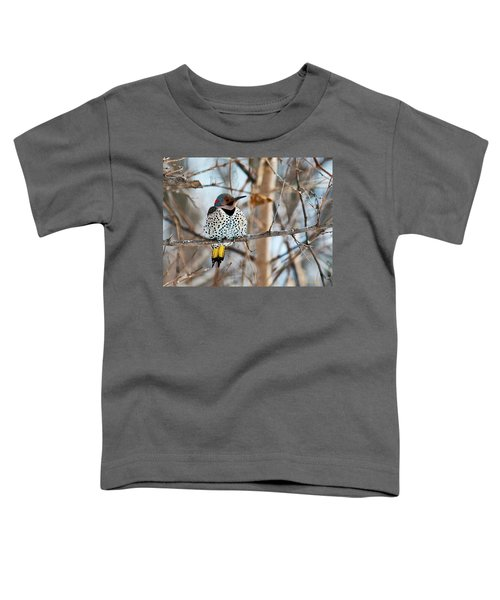 Yellow-shafted Northern Flicker Staying Warm Toddler T-Shirt
