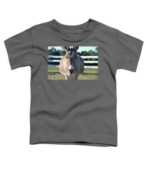 Toddler T-Shirt featuring the photograph You Wanna Pin What Where? by Andrea Platt