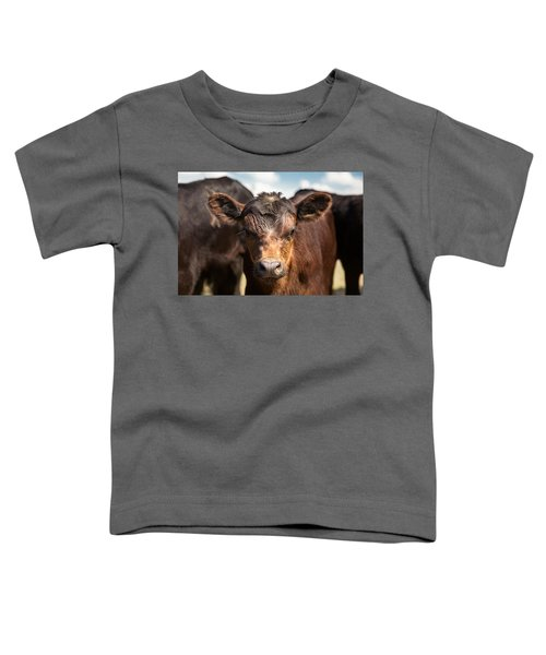 Young Angus Toddler T-Shirt