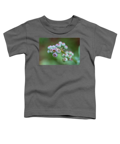 Young Blueberries Toddler T-Shirt
