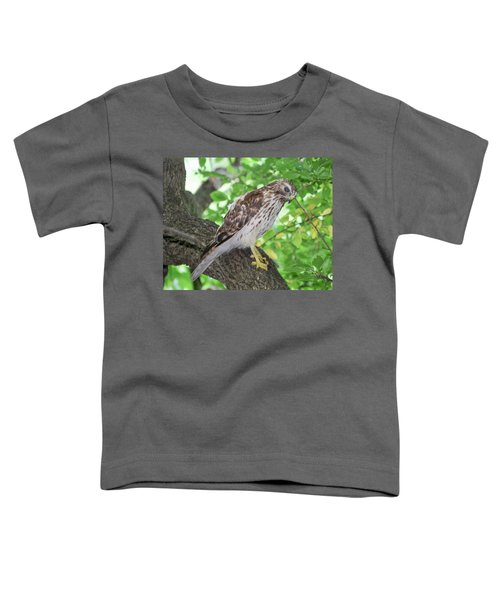 Young Red Shouldered Toddler T-Shirt