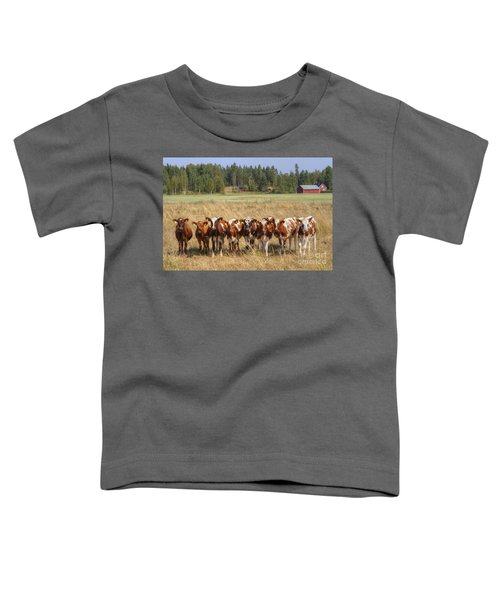 Young Calves On Pasture Toddler T-Shirt