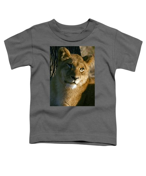 Young Lion Toddler T-Shirt