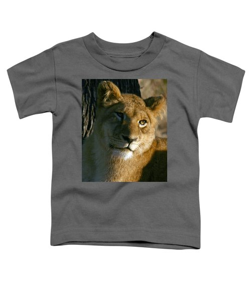 Young Lion Toddler T-Shirt
