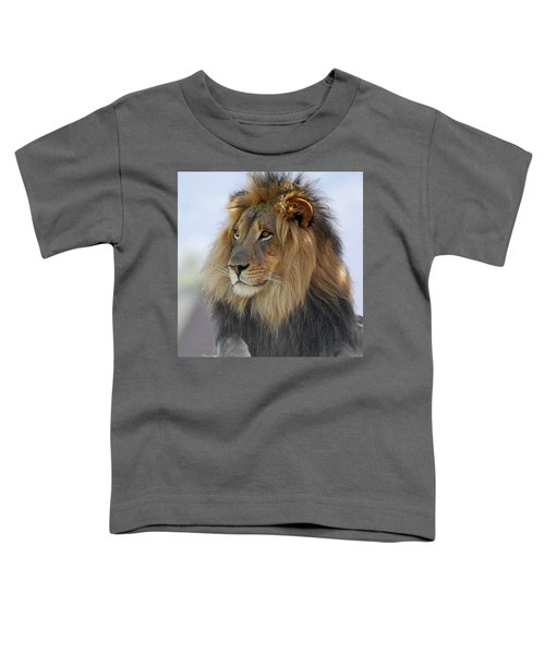 Young Male Lion Toddler T-Shirt