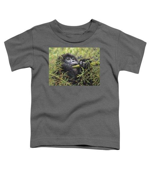 Young Mountain Gorilla Toddler T-Shirt