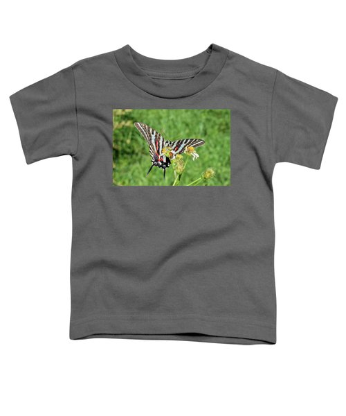 Zebra Swallowtail And Ladybug Toddler T-Shirt