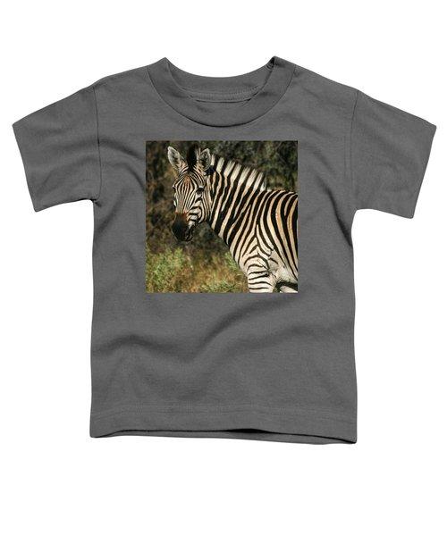 Zebra Watching Sq Toddler T-Shirt
