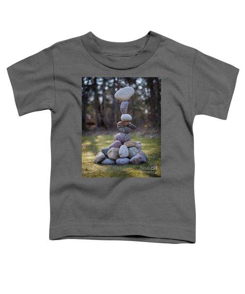 Zenplexity Toddler T-Shirt