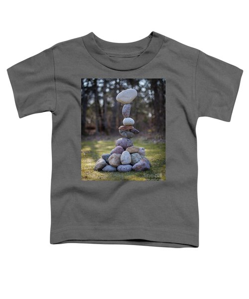 Zenplexity Toddler T-Shirt
