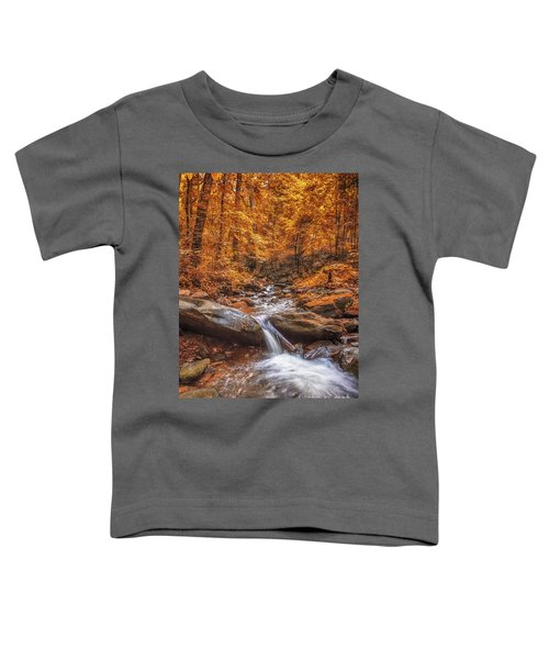 Amicalola Falls Toddler T-Shirt