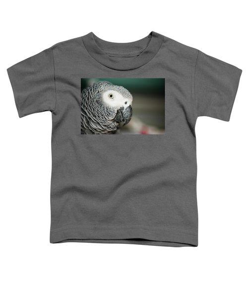 Close Up Of An African Grey Parrot Toddler T-Shirt