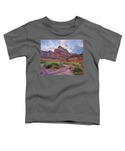 Desert And Cliffs, Vermilion Cliffs Nm Toddler T-Shirt
