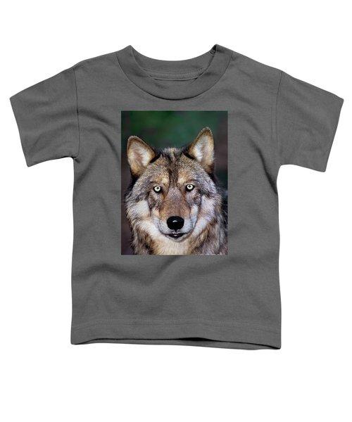 Gray Wolf Portrait Endangered Species Wildlife Rescue Toddler T-Shirt