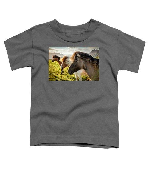 Icelandic Horses Toddler T-Shirt