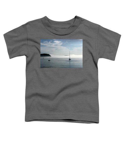 Morning Mist On Frenchman's Bay Toddler T-Shirt