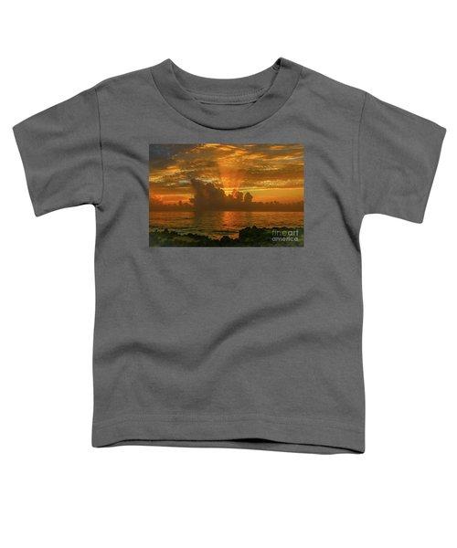 Orange Sun Rays Toddler T-Shirt