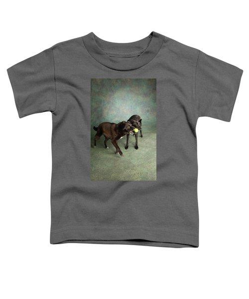 Portrait Of A Border Collie Mix Toddler T-Shirt