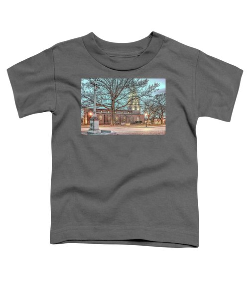 Saint Annes Circle With Fountain Toddler T-Shirt