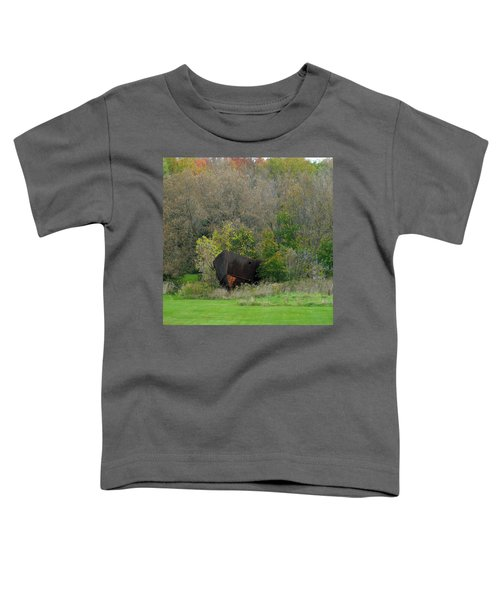 The Lost Arc Toddler T-Shirt