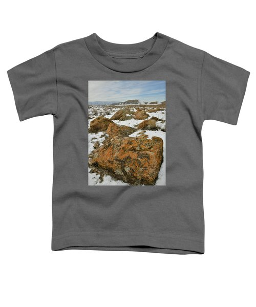 The Many Colors Of The Book Cliffs Toddler T-Shirt