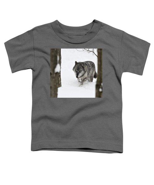 Timber Wolf Toddler T-Shirt