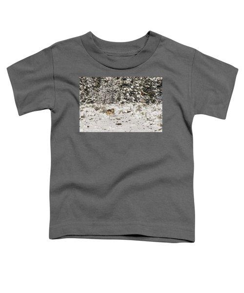 W20 Toddler T-Shirt