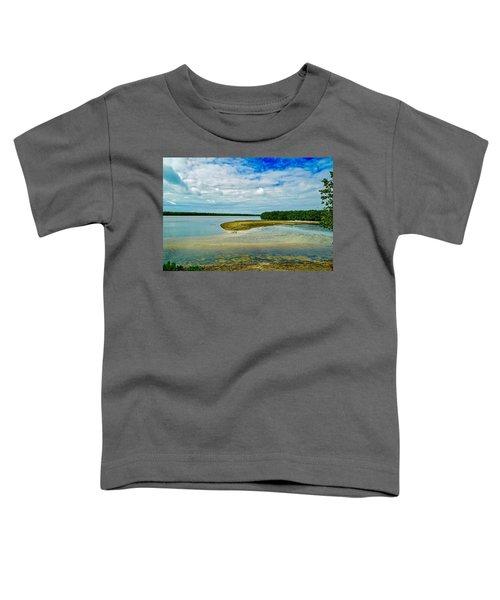 Wildlife Refuge On Sanibel Island Toddler T-Shirt