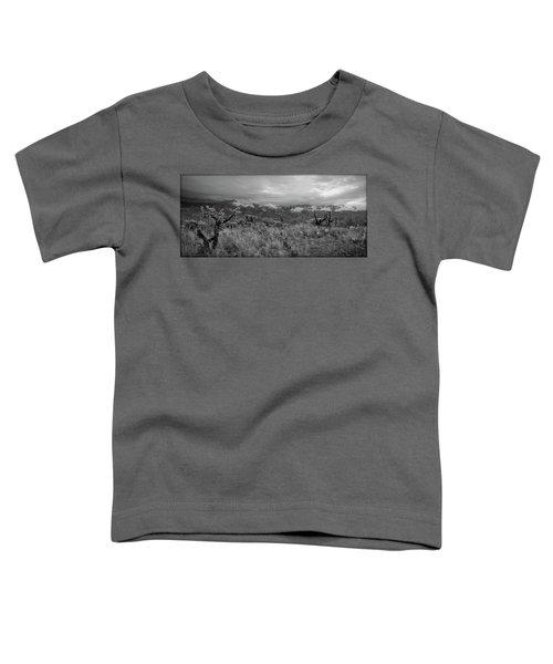 12-26-18 Snow Storm Toddler T-Shirt