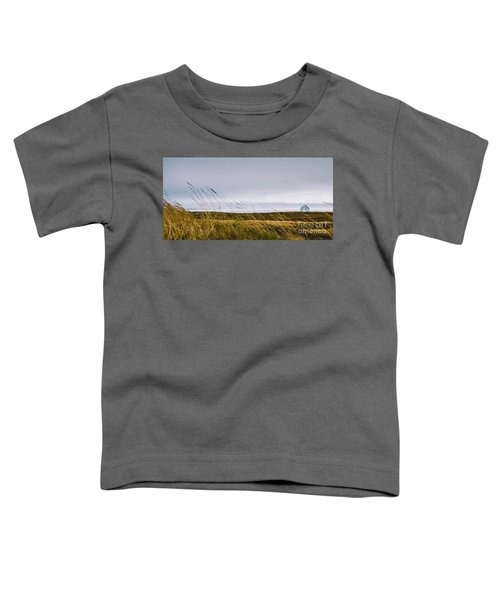 Beautiful Panoramic Photos Of Icelandic Landscapes That Transmit Beauty And Tranquility. Toddler T-Shirt