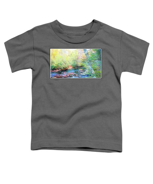 Pocono Mountain Stream, Pennsylvania Toddler T-Shirt