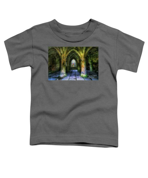Valle Crucis Abbey Toddler T-Shirt