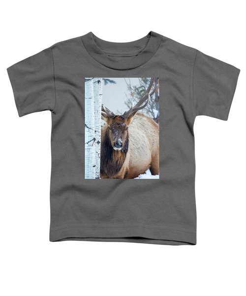 4 Wire Winter  Toddler T-Shirt